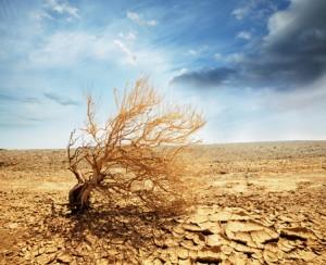 Skin dehydration