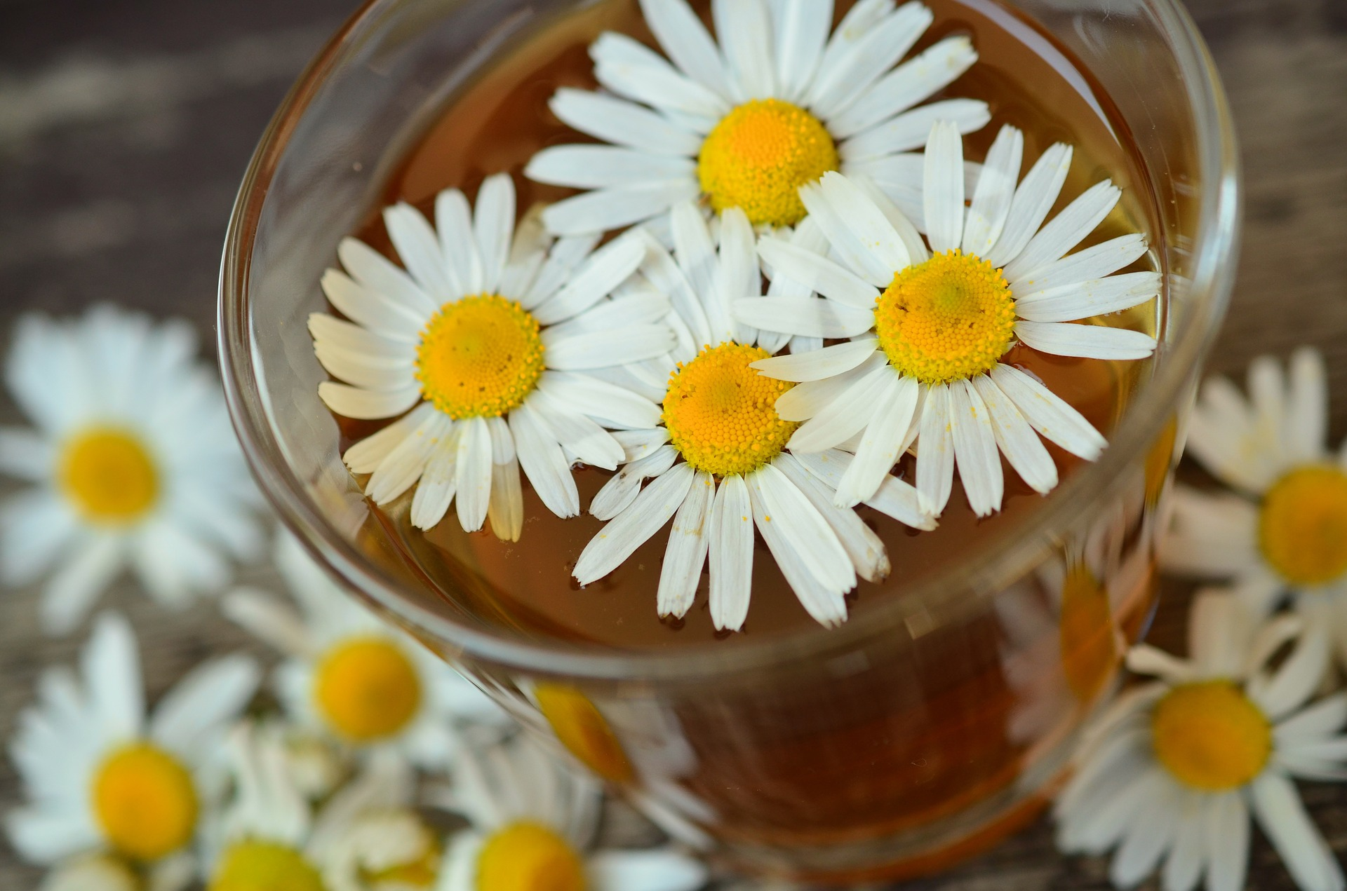 Chamomile and Acne